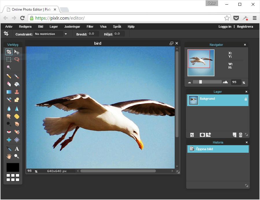 Skärmdump från det Photoshop-liknande verktyget Pixlr Editor.
